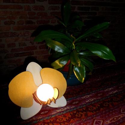 lampe bois fleur phalaenopsis