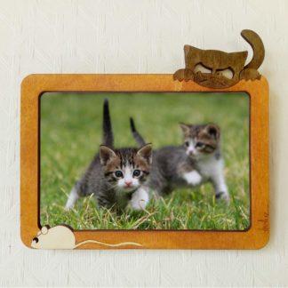 cadre photo chaton