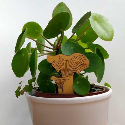 Chanterelle en bois décoration