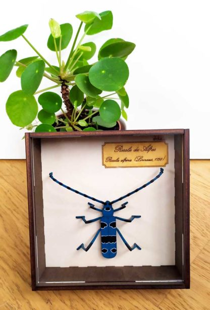 Insecte en bois naturalisé